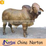 Life size bronze Brahman bull statues for sale NTBA-B020Y