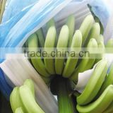 Blue PE bags banana protective bags with high quality