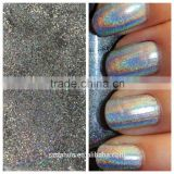 SHEN ZHEN DAHUA high quality 12 colors nail beauty glitter powder laser holographic metallic gel polish