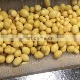 Automatic Fruit Brush Roll Type Washing Peeling machine
