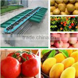 YSXS-76-16-100 apple / mango / tomato / potato / kiwi fruit sorting machine                                                                         Quality Choice