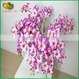 china real touch flowers wholesale artificial orchid artificial butterfly orchid artficial phalaenopsis for sale
