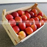 FRESH APPLE / APPLE VARIETIES / PACKED
