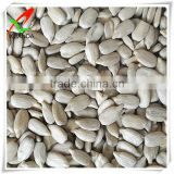 hulled sunflower seed kernels for bakery & confectionary