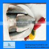 fresh frozen pacific mackerel fillet