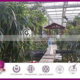 8mm Polycarbonate Honeycomb Panel,Agricultural greenhouse,Polycarbonate Greenhouse Sheet