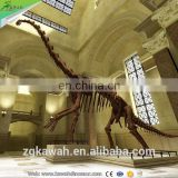 KAWAH Fiberglass Aniaml Replica Skull Popular Resin Life-size Skeleton Dinosaur Model For Sale