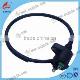 Motorcycle Electronic Ignition CDI Unit Motorcycle Ignition Coil China Motorcycle Ignition Coil Factory
