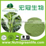 100% Natural Organic 50%-98% EGCG Green Tea Extract Powder,Green Tea Powder,Green Tea Extract