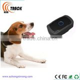 worlds smallest gps tracking device for pets and kids