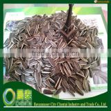 Supply Top Quality Raw Hulled 5009 (24/64)Ameican Sunflower Seeds