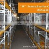 poultry farm construction Broiler cage system for poultry farm equipment