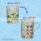 FDA Approved Hot Water Creative Magic Mug Color Changing Mug,Custom Make Especial Ceramic Mug