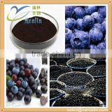Bulk Supply Spray Dried Fruit Powder Freeze Dry Acai berry Powder