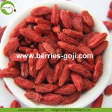 Factory Supply Dried Ningxia Lycium