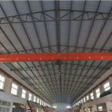 high quality eot crane with rail system
