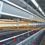 Malawi Selling Poultry Farm Equipment - Broiler Cage & Meat Chicken Cage & Chicken Coop in Broiler House & Chicken Shed