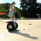 powerful and robust balance wheel boards, two wheel gyro scooter