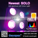 Newest Geyapex SOLO 300w 600w LED Plant Grow Lighting with Full Spectrum COB & 5w led