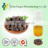 Wholesale Health Care Anti-aging Moringa Oil Bulk Ben Oil