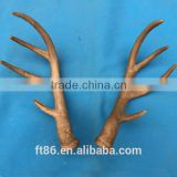 deer artificial animals antlers plastic animals horn foam antlers