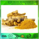 Natural Bulk turmeric curcumin extract / curcumin powder with best price