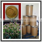 Natural 4:1 Brown Powder Extract from Euphrasia Officinalis