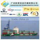 Sea Freight DDU Shipping Service from China to Semarang