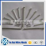 bright shining building brick wall concrete nails                                                                         Quality Choice