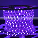 Waterproof SMD 5050 high voltage 110V 220V 60 led per mtr wedding decoration rgb thin flexible led rope strip light outdoor use