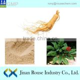 Pure Red korean Panax Ginseng root Best price High quality manufacturer panax ginseng root extract