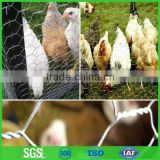 Hexagonal wire mesh factory/galvanized poultry wire netting                                                                         Quality Choice