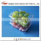 Clear Clamshell Blister Plastic packaging container for blueberry                                                                         Quality Choice