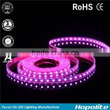 Waterproof 5050 Rgb Led Strip 5m 300 Led Smd 44 Keys Ir Remote Controller 12v 5a Power Adapter Flexible Light