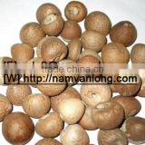 DRIED BETEL NUT at VERY HIGH QUALITY & COMPETITIVE PRICE