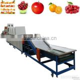 multifunctional stainless steel tomato potato citrus washing and waxing machine/fruit and vegetable grading machine                                                                         Quality Choice