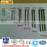 big sales china zinc galvanized common wire nails / roofing nail                                                                         Quality Choice