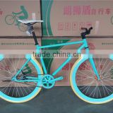Colorful Fixed Gear Bike With Carbon Steel Frame