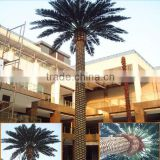 Artificial Planting Tree Ferns Tree Large Landscape Tree Date Palm Tree Types Customized Phoenix Dactylifera