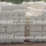 Raw Cotton Price