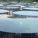 Plastic sheets-shrimp and fish pond mulching film HDPE Liner / Pond Liner for preventing virus
