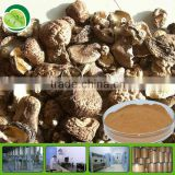 GMP factory dried shiitake mushroom powder