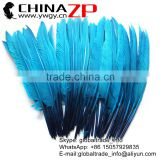 Gold Supplier ZPDECOR Factory Bulk Sale Selected Prime Quality Cheap Dyed Peacock Green Duck Pointer Feathers