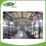 Large scale cow farm milking parlor (Hall)