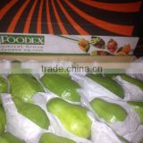 FRESH GUAVA WITH BEST PRICE AND GOOD QUALITY