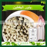 2015 New Crop Largest Supply All Kinds Of Raw Edible Pumpkin Seed