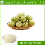 Factory Supply 100% Pure Natural Noni Fruit Powder