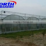 High Tech Multi Span Polycarbonate / Poly Film Agricultural Greenhouse for Hydroponics and Soil