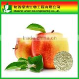 Natural Apple Stem Cell Powder/Wood Apple powder