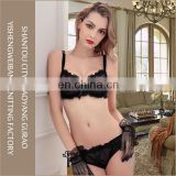Woman fashion underwear set transparent lace bra and brief sets